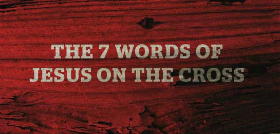 7 cross words